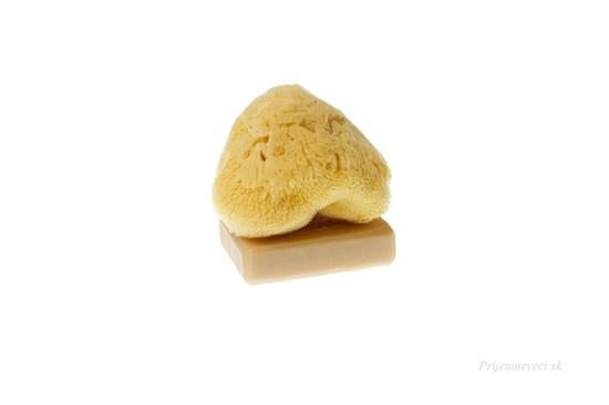 Morská huba hodvábna - stredná bielená