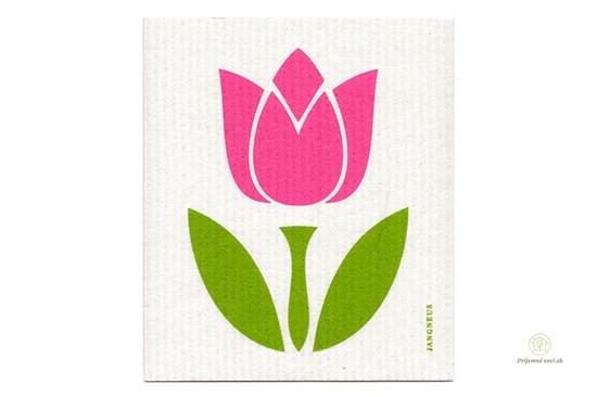 Hubka - tulipán ružový