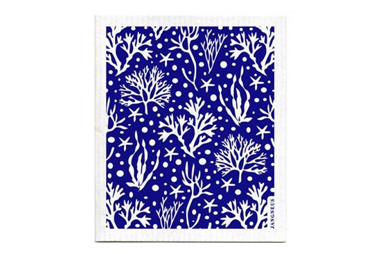 Hubka - koral modrý