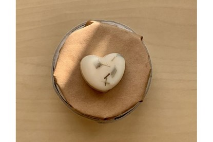 Obrázok pre výrobcu Vonný sójový vosk - citrónová tráva