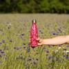 Termofľaša Qwetch - 500ml - červené kvietky