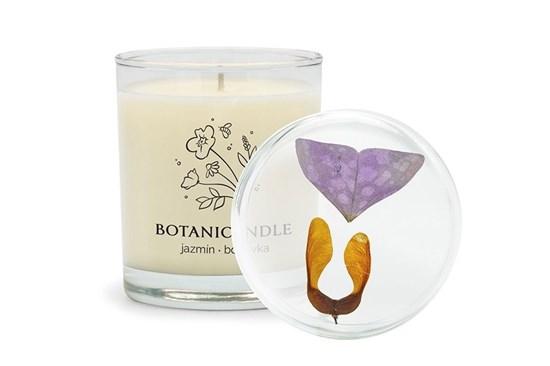 Sójová sviečka Botanicandle - veľká - jazmín, borievka